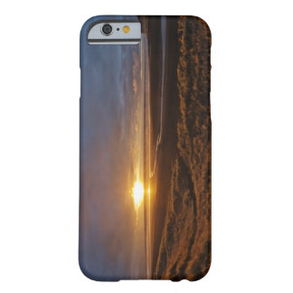 Sun setting over Tasman Sea and Piha Beach, West Barely There iPhone 6 Case