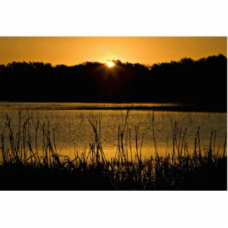 Sun setting over wetland photo cutouts