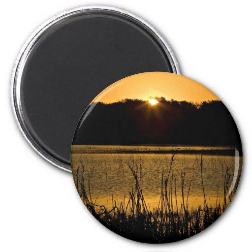 Sun setting over wetland refrigerator magnets