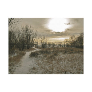 Sun Shines on a Wooded Meadow Gallery Wrapped Canvas
