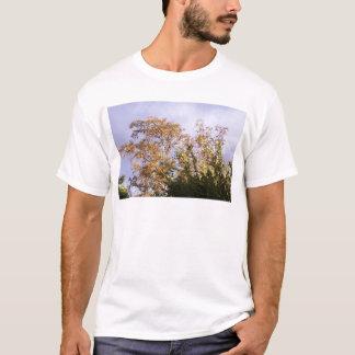 sun shining through birch T-Shirt