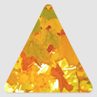 Sun Soaked Fall Leaves Triangle Sticker