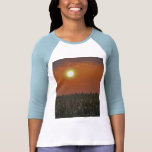 Sun sobre un campo de maíz camisetas