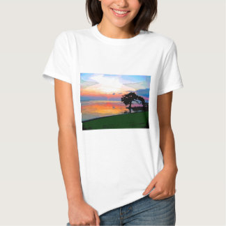 Sun Spill Ladies Baby Doll (Fitted) T-Shirt