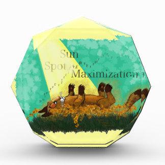 Sun Spot Maximization Acrylic Award