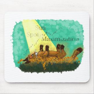 Sun Spot Maximization Mouse Pads