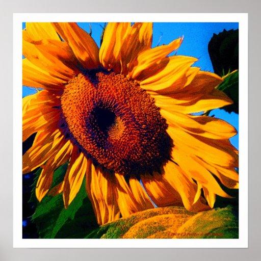 'Sun Spots 1.1' Poster
