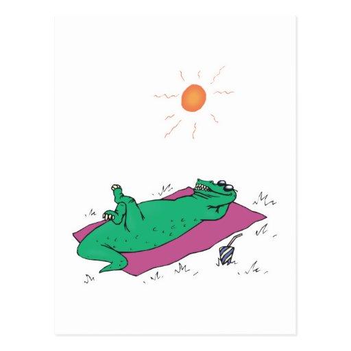 sun tanning crocodile postcard