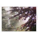 Sun, telaraña, y tarjeta del árbol de ciruelo