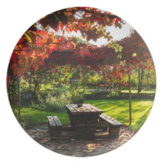 Sun through autumn leaves, Croatia Melamine Plate