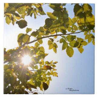 Sun through leaves Tile