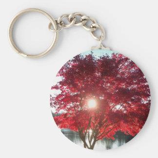 Sun through Red Maple Basic Round Button Keychain