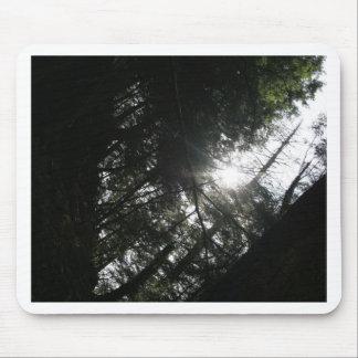 Sun Through Trees Mouse Pad