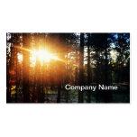 Sun Tree Business Card