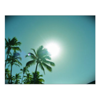 Sun tropical postal
