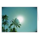 Sun tropical tarjetas