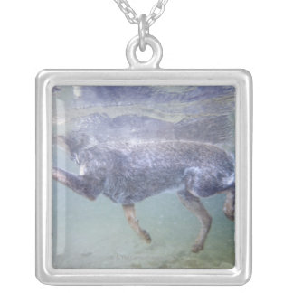 Sun Valley, Idaho, USA. Silver Plated Necklace