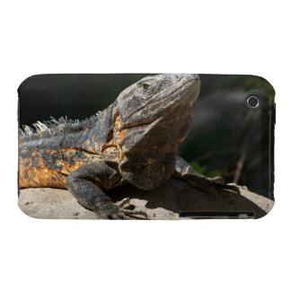 Sun-Worshipping Iguana iPhone 3 Case