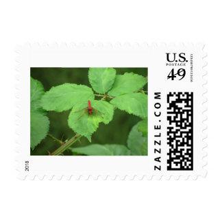 Sunbather Stamp
