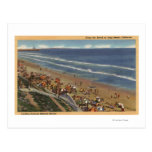 Sunbathers que miran hacia las orillas de Belmont Tarjeta Postal