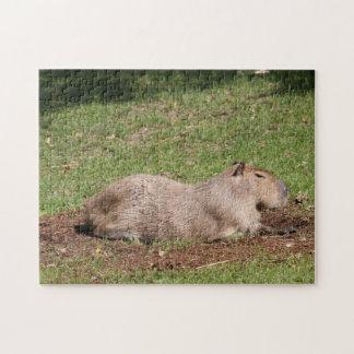 Sunbathing Capybara Jigsaw Puzzle