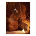 Sunbeam hitting tumbleweed on canyon floor postcard
