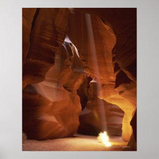 Sunbeam hitting tumbleweed on canyon floor poster