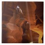 Sunbeam hitting tumbleweed on canyon floor tile