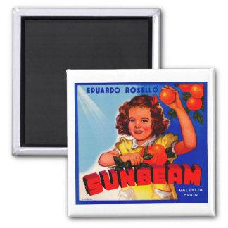 Sunbeam Magnet