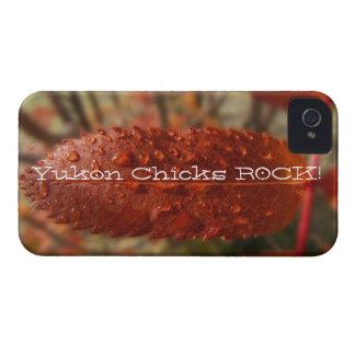 Sunbeam on Mountain Ash; Yukon Chicks ROCK! iPhone 4 Cover