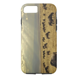 Sunbeams and Wildebeest, Connochaetes taurinus iPhone 8/7 Case