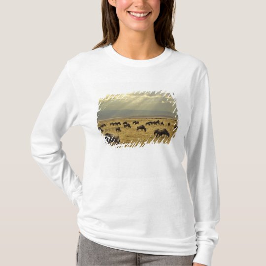 Sunbeams and Wildebeest, Connochaetes taurinus T-Shirt