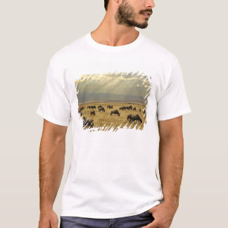 Sunbeams and Wildebeest, Connochaetes taurinus T-Shirt