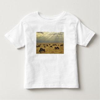 Sunbeams and Wildebeest, Connochaetes taurinus Toddler T-shirt