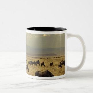 Sunbeams and Wildebeest, Connochaetes taurinus Two-Tone Coffee Mug