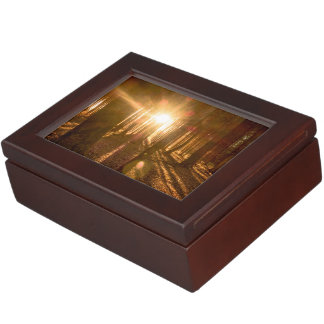 Sunbeams in Forest Memory Box