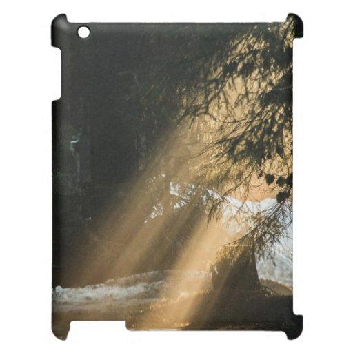 Sunbeams iPad Covers