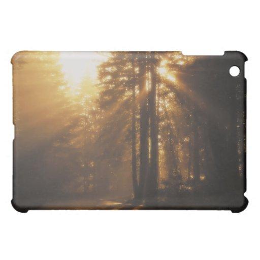 Sunbeams Case For The iPad Mini