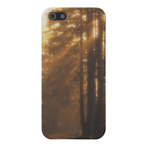 Sunbeams iPhone 5 Covers