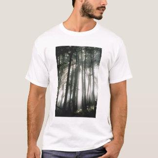 Sunbeams streaming through trees, Mount Rainier T-Shirt