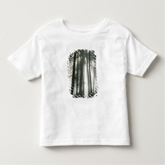 Sunbeams streaming through trees, Mount Rainier Toddler T-shirt