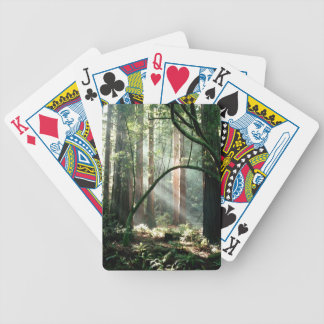 Sunbeams through the trees playing cards