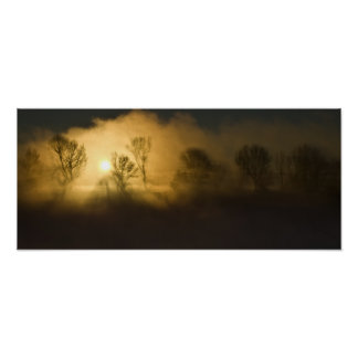 Sunbeams through trees poster