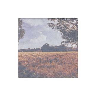 sunburn grass field in sunny day stone magnet