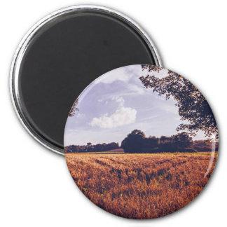 sunburn grass field in sunny day 6 cm round magnet