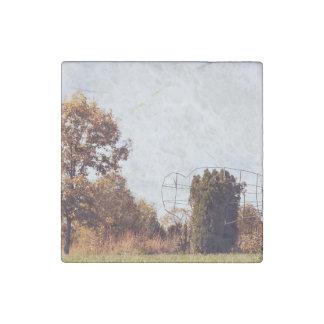 sunburn trees landscape stone magnet