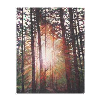 Sunburst 2010 canvas print