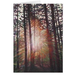 Sunburst 2010 card
