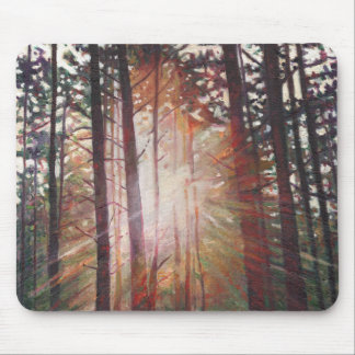 Sunburst 2010 mouse pad