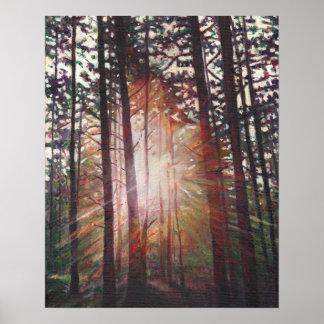 Sunburst 2010 poster